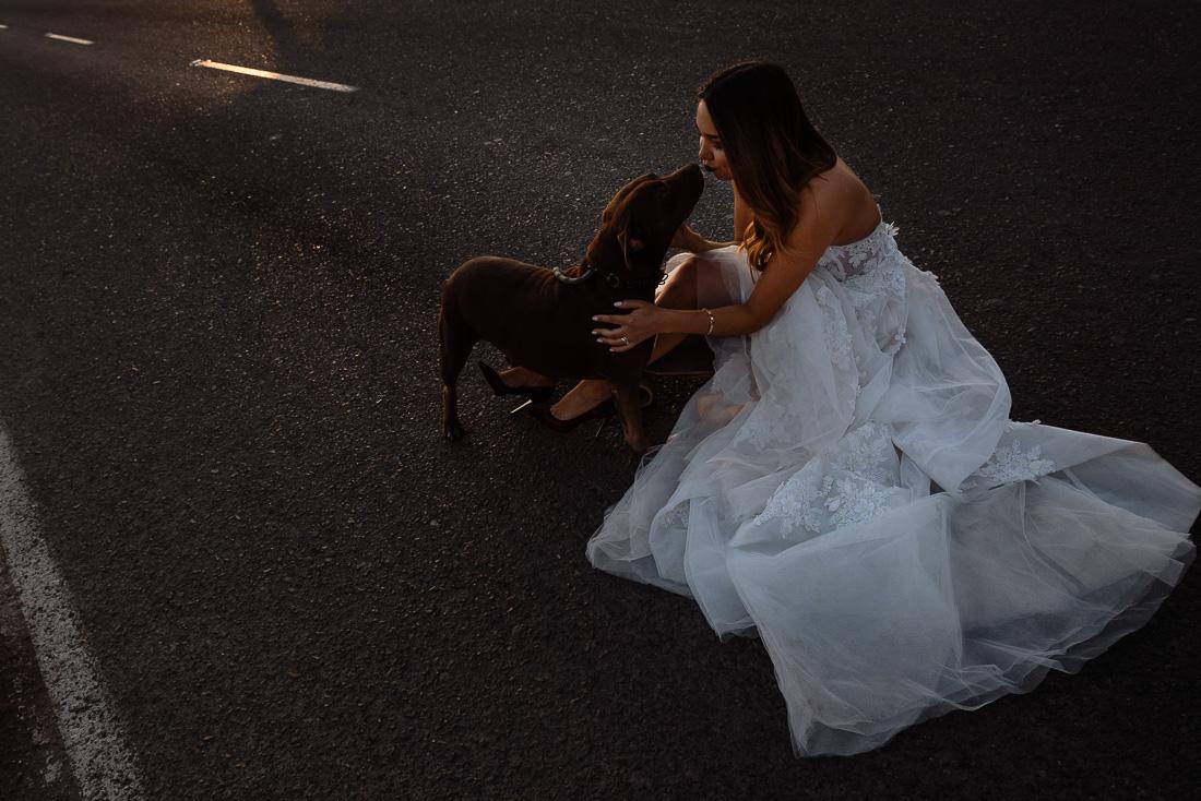 novia con su perro, vestido de novia y mascota, beso